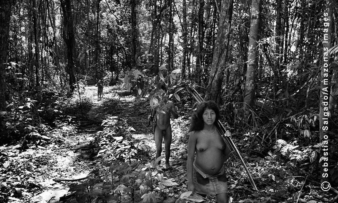 O povo Awá está extremamente vulnerável. Eles são pouco mais de quatrocentas pessoas e vivem cercados de municípios que dependem da extração da madeira