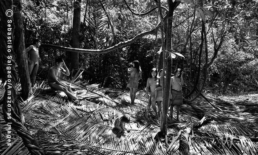 Os Awá pertencem a um dos últimos grupos indígenas considerados caçadores e coletores e são definidos pela Funai como 'índios de recente contato ou isolados'