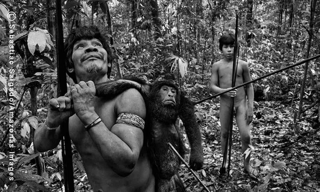 O índio Txiparamatxa´a carrega um macaco saquê preto, após flechá-lo duas vezes sobre as árvores, numa altura de mais de 30 metros Sebastião Salgado/ Amazonas Images