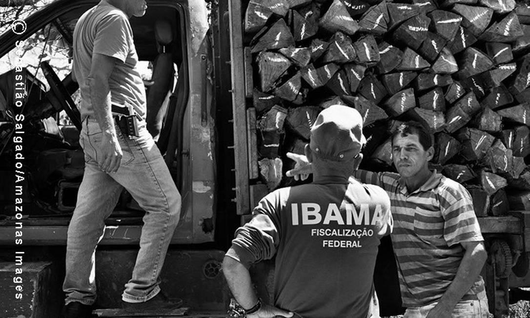 Um membro da FUNAI e um agente do IBAMA flagram um caminhão que transportava madeira ilegalmente, retirada da reserva indígena Foto: c