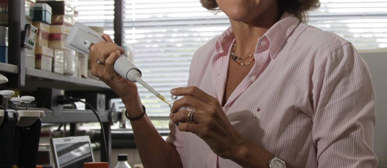 Lygia da Veiga Pereira. Em seu laboratório, na USP, um alerta para as falsas promessas envolvendo células-tronco Foto: Marcos Alves / Agência O Globo