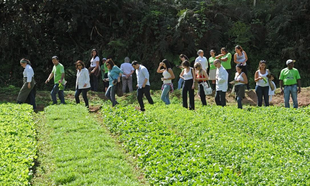 Ecochefs levaram consumidores e empresários do setor de gastronomia para conhecer a comunidade do Brejal, em Petrópolis Adriana Lorete/O Globo