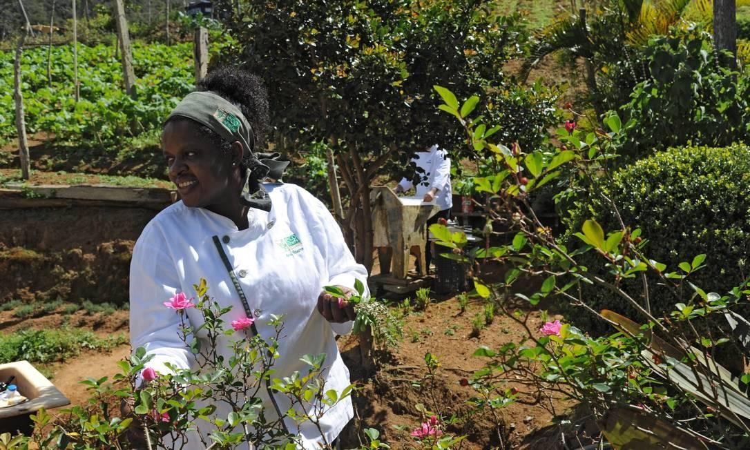 A chef Ana Ribeiro saiu pela propriedade catando folhas e ervas para os pratos que seriam servidos Adriana Lorete/O Globo