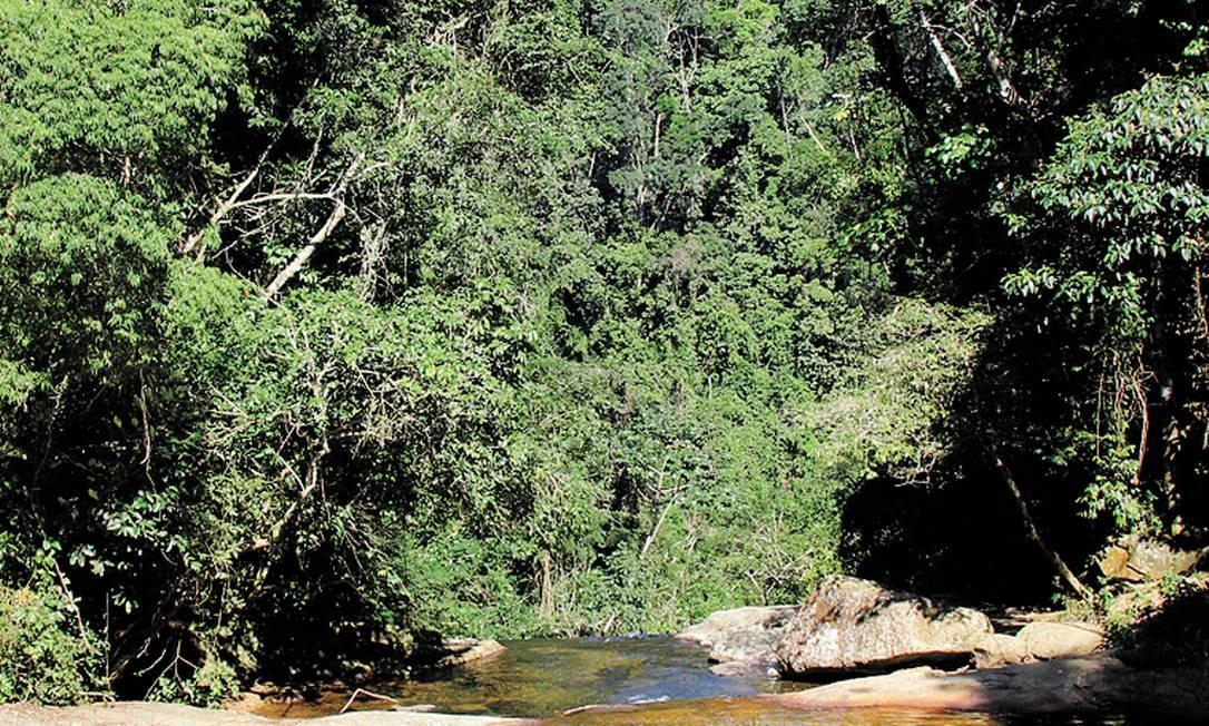 Uma das cachoeiras do Parque do Mendanha, o 19º do estado - Foto: Luiz Morier/Divulgação
