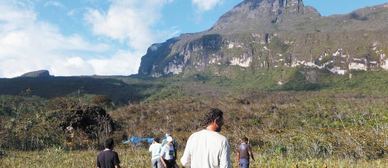 Pico da Neblina, no Norte do Amazonas Foto: Terceiro / Divulgação