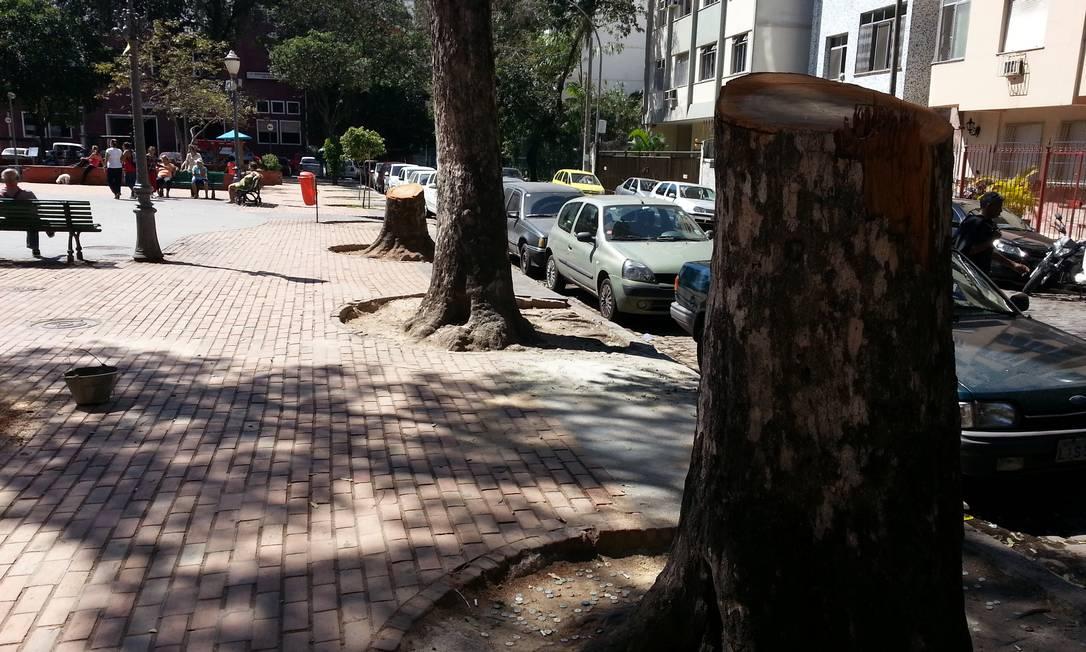 Frequentadores criticam a remoção de árvores sem que haja replantio - Foto: Foto do leitor Lima de Amorim / Eu-Repórter