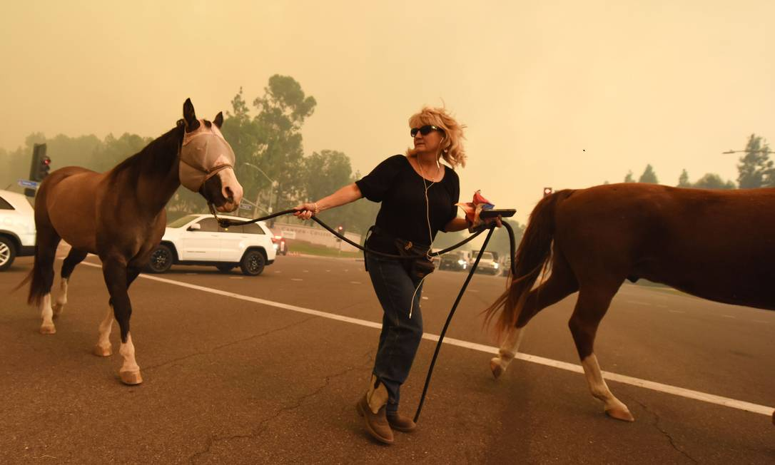 Mulher ajuda cavalos a abandonar região de Santa Ana em meio à fumaça do fogo ROBYN BECK / AFP