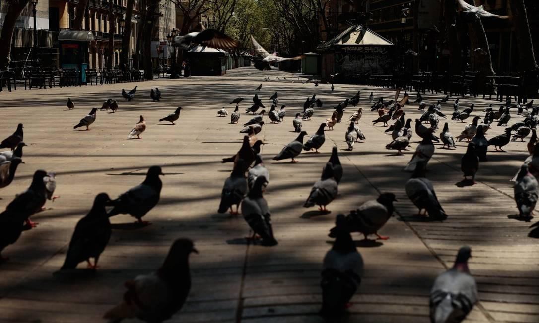 Pombos na avenida Las Ramblas, em Barcelona, deserta por causa da quarentena em vigor na Espanha Foto: PAU BARRENA / AFP