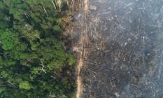 Vista aérea da selva amazônica, entre área que sofreu queimada e área preservada Foto: UESLEI MARCELINO / REUTERS 11-8-20
