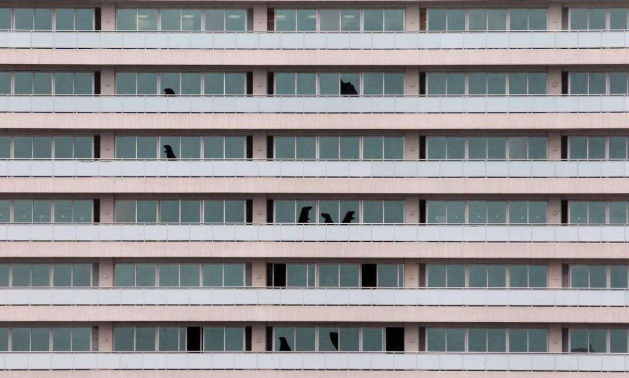 Janelas de um prédio a cem metros do local foram quebradas com a explosão Foto: Fernando Donasci / Agência O Globo