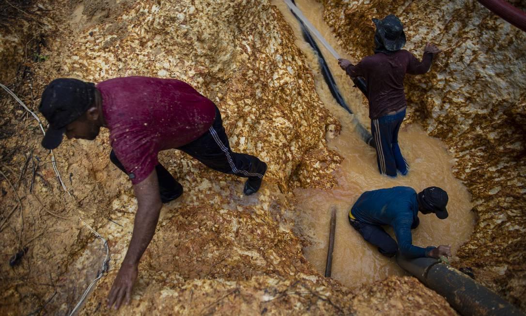 Garimpo ilegal de ouro na reserva indigena dos Yanomami Foto: Daniel Marenco / Agência O Globo