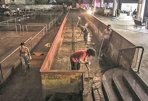 Integrantes do movimento limpam o espaço que pertence à UFRJ Foto: Divulgação