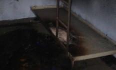 Parte dos estragos em alojamento do Degase Foto: Divulgação