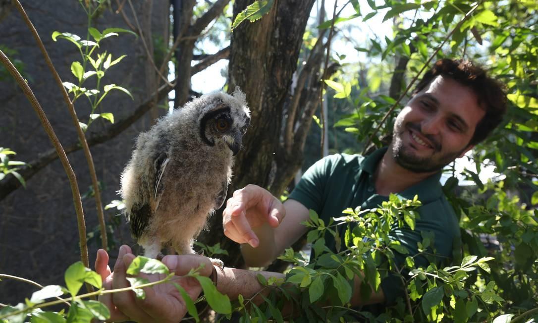 O zoo, além dos 1.200 animais de 257 espécies, tem novidades. Uma delas é o tour guiado, em que crianças podem até alimentar aves em viveiros Foto: Custódio Coimbra / Agência O Globo