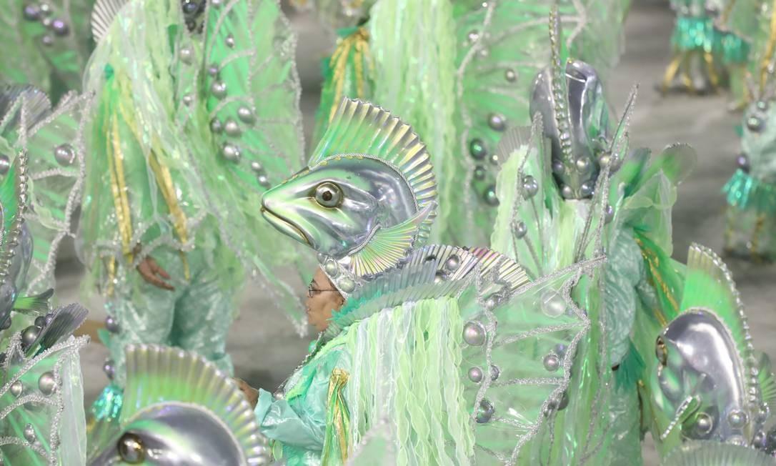 Peixes compõem acervo do museu e são lembrados em desfile da Imperatriz Leopoldinense Foto: Bárbara Lopes / Agência O Globo