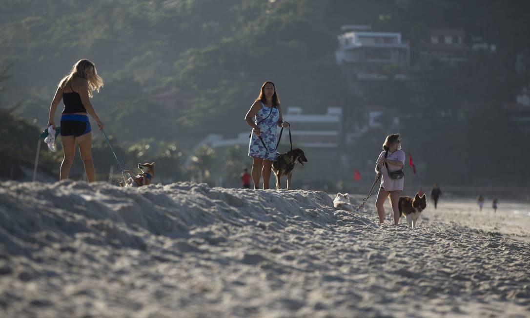 Na foto, donos passeiam com seus cães na praia da Barra, na altura do Quebra-mar, apontada pela prefeitura como uma das mais sujas da cidade Foto: Márcia Foletto / Agência O Globo
