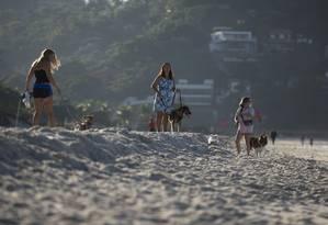 Donas passeiam com seus cães na praia da Barra, na altura do Quebra-mar Foto: Márcia Foletto 25/06/2019 / Agência O Globo