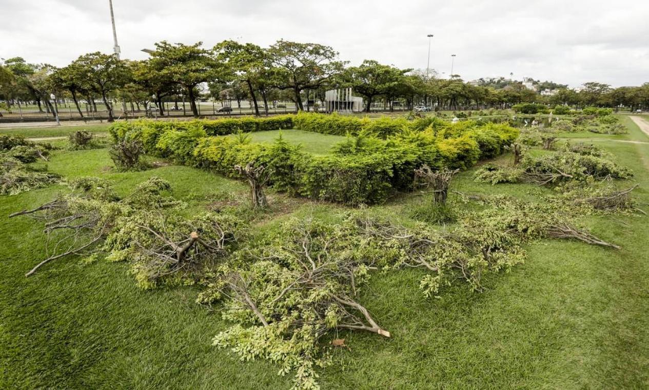 De acordo com a Fundação Parques e Jardins (FPJ), nos últimos dois anos, dezenas de ficus microcarpa (uma espécie de árvore tropical) que compõem a praça não receberam qualquer tipo de cuidado ou serviço de poda artística Foto: Gabriel de Paiva