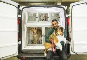 Motorista Rogério Thomaz leva os cães Beethoven, Billie e Mel para suas casas após banho Foto: Bárbara Lopes / Agência O Globo