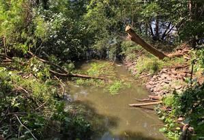 Saco Grande, trecho da Lagoa da Tijuca, recebe esgoto via galeria de água pluvial Foto: Divulgação/Mario Moscatelli