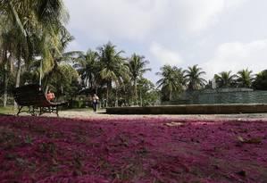 A Praça do Pomar é uma das disponíveis para adoção Foto: Antonio Scorza / Agência O Globo