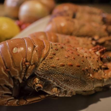 Lagosta é um dos pratos do festival de frutos do mar da Churrascaria Palace Foto: Edir Filho / Divulgação