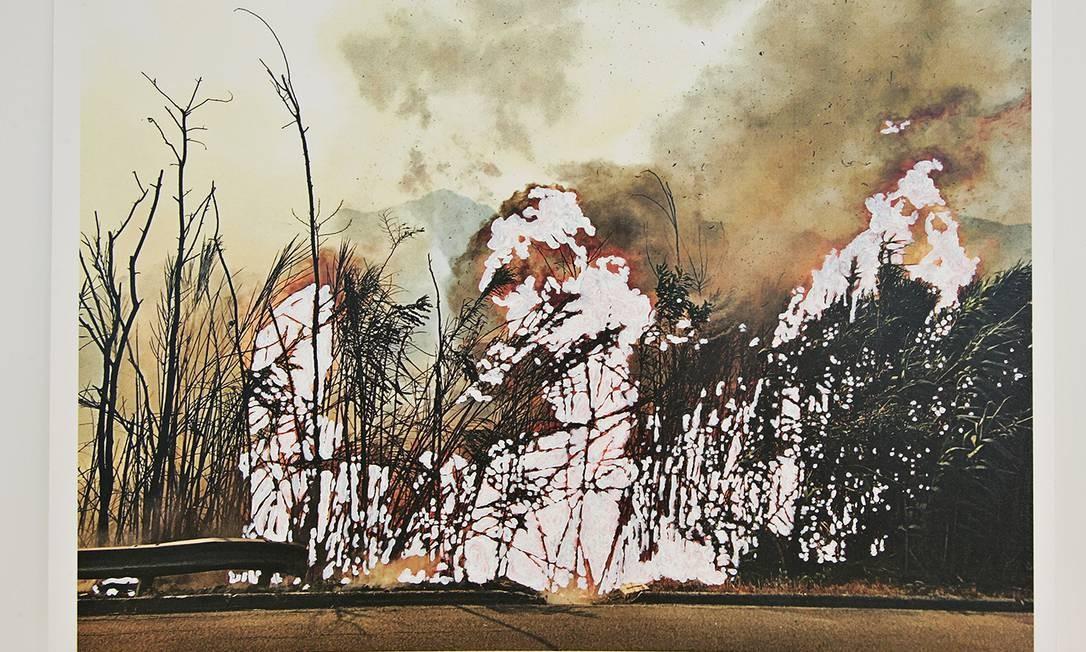 """Entre suas inspirações, estão a relação entre o homem e o meio-ambiente, como no caso dos incêndios criminosos que devastaram sua região. Na foto, """"Apagões"""" Foto: Lucio Salvatore"""